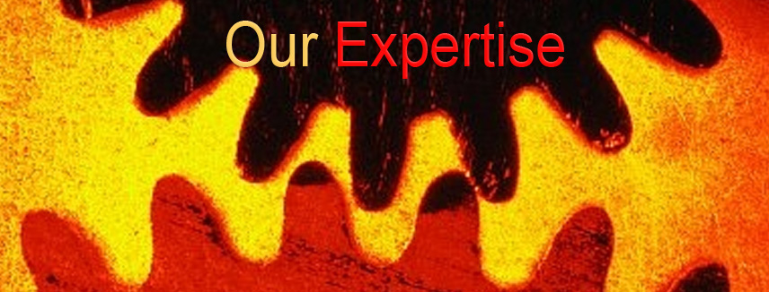 Tri I Areas of Expertise
